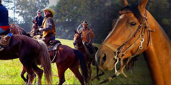 60minutová projížďka na koni vewestern stylu s instruktorem