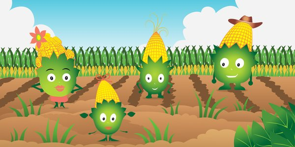 Vstup do největšího kukuřičného bludiště v ČR