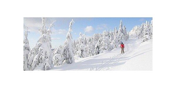 Pronájem horské Chaty Adélka v Krušných horách na 3 dny až pro 12 osob
