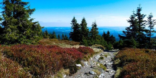 Pronájem chaty v Jeseníkách až pro 14 osob