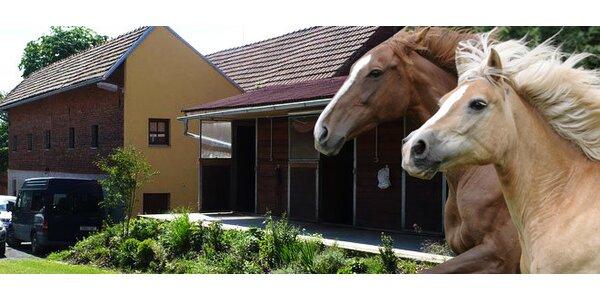 Víkend na ranči a vyjížďky na koních pro DVA