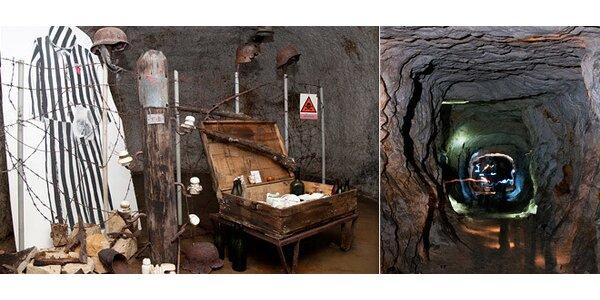 Čtyřhodinová exkurze do tajné podzemní letecké továrny