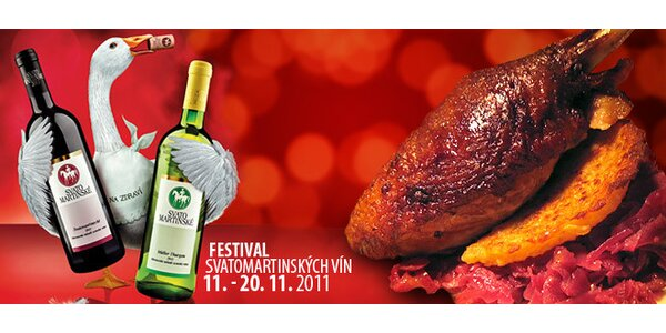 Sedm žetonů na Festival Svatomartinských vín + sklenička