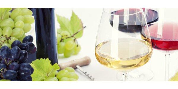 DVĚ svatováclavská vína dle výběru