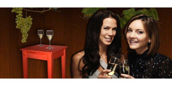 10litrový bag-in-box skvělého moravského vína