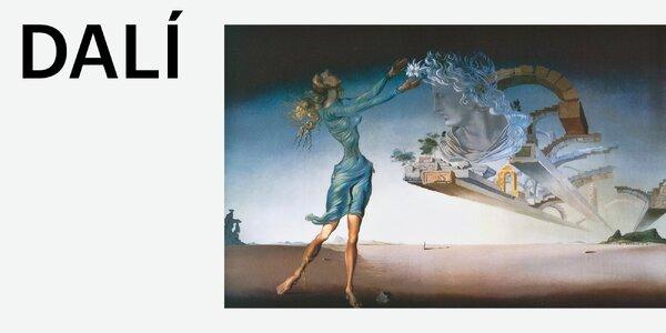 2 vstupenky na výstavu Salvadora Dalího