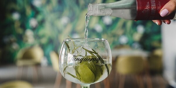 Degustace 3 drinků: Gin Tonic, Sour nebo Mule