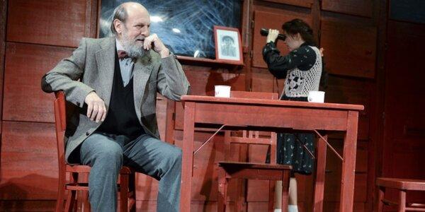 Vstupenka na divadelní hru: Naše sebrané trable