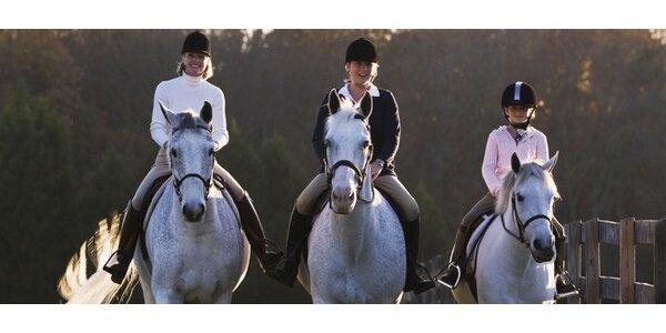Jízda na koni. Výcvik v terénu i kryté hale