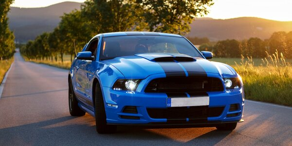 Ford Mustang Shelby nebo Cabrio na 1 až 12 hod.