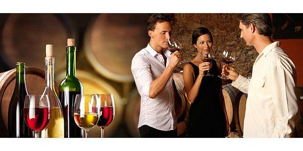 Řízená degustace vín s vinaři