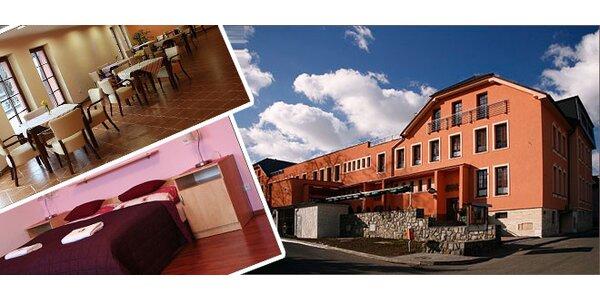 Pobyt v krásné krajině kopcovitých terénů Oderských Vrchů v hotelu Dělnický Dům.