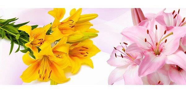 10 lilií jako dárek z lásky i k narozeninám