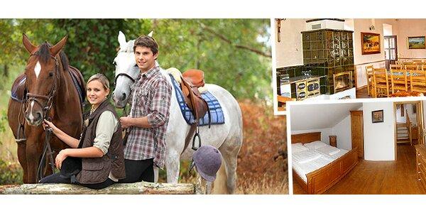 Jeseníky pro milovníky koní a přírody