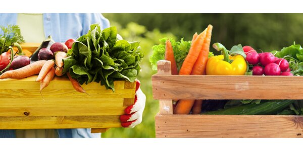 5 kg zeleniny a ovoce od farmářů