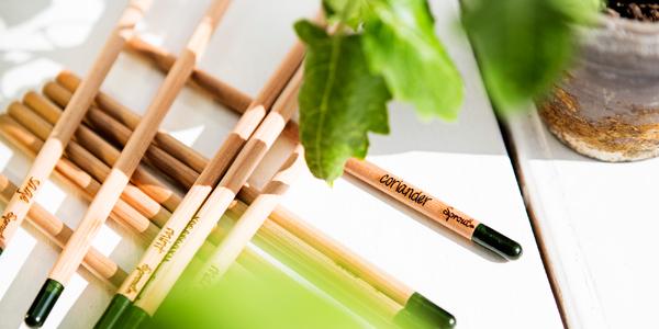 Rostoucí tužky a pastelky SPROUT