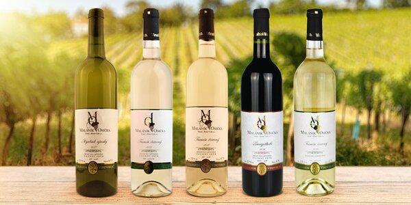Sety 6 vín z Moravy: Ryzlink, Tramín i Zweigeltrebe