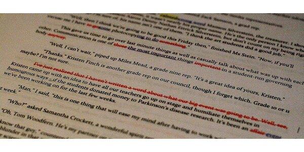 Jazyková korektura diplomové práce nebo jiných písemných dokumentů