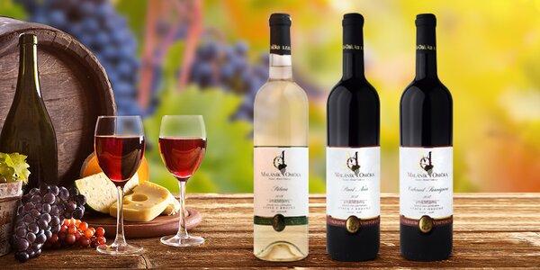 Moravská vína: Pálava, Sauvignon, Pinot Noir