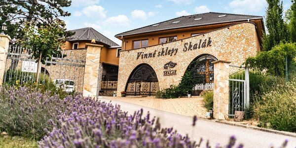 Pobyt ve vinařství na Slovácku: polopenze, degustace