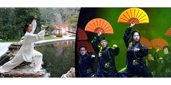 Podzimní kurz tai-chi nebo čchi-kung pro úplné začátečníky