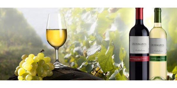 DVĚ výběrová chilská vína Ochagavia