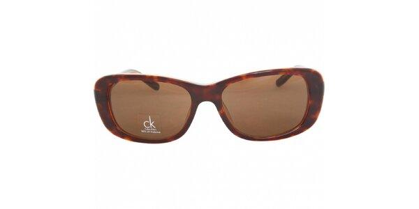 Dámské hnědé žíhané sluneční brýle Calvin Klein