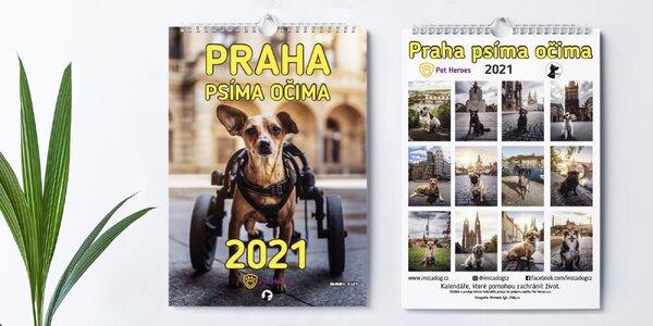 Praha psíma očima: charitativní kalendář 2021