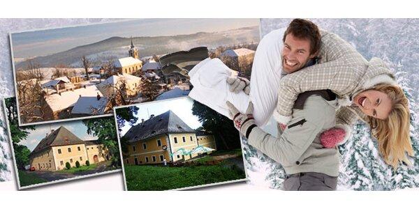 3denní wellness pobyt pro DVA v Penzionu Panský dům