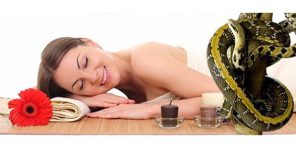 Zdravotní masáž s hadím jedem v délce 60 minut