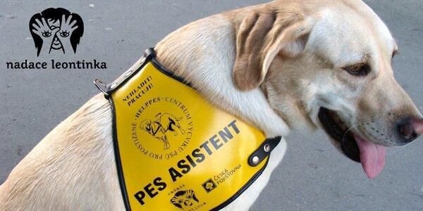 Příspěvek na výcvik asistenčních psů pro děti