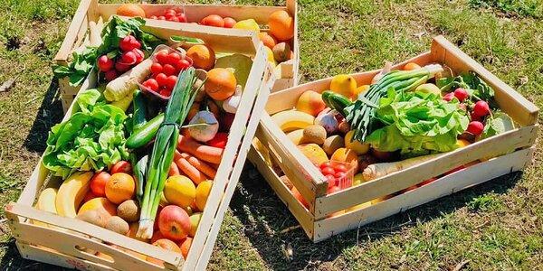 Bedýnky plné vitamínů: až 13 kg ovoce a zeleniny