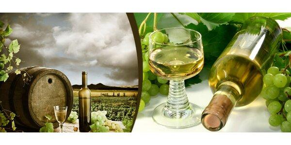 Nabídka tří odrůd Víno Popela Perná na Pálavě