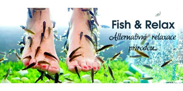 Lázeň s rybkami Garra rufa pro vaše nohy či celé tělo