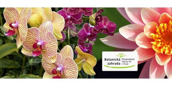 Rodinné vstupné do Botanické zahrady UK v Praze