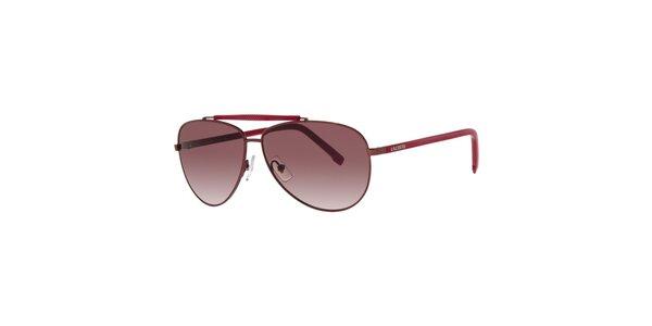Pánské sluneční brýle Lacoste