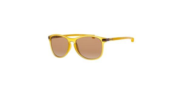 Žluté pánské sluneční brýle Lacoste