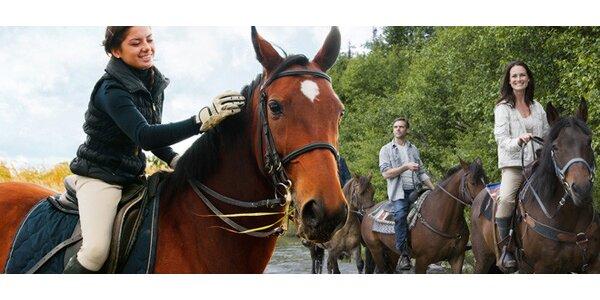 Vyjížďka na koni pro dospělé i děti. S instruktorem!
