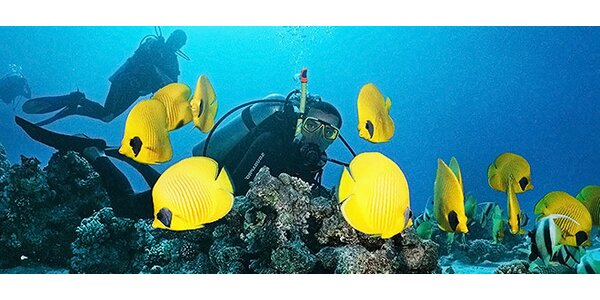 Ochutnávkový ponor nebo potápěčský kurz