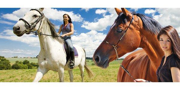 Nádherná hodinová vyjížďka na koních