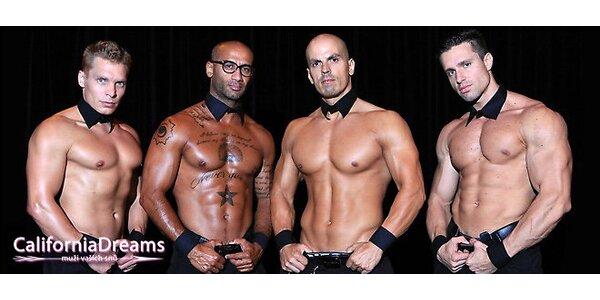 Mega Show 2013 - Nejlepší striptéři v akci!