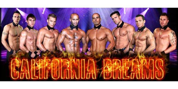 Nová striptýzová show krasavců z California Dreams
