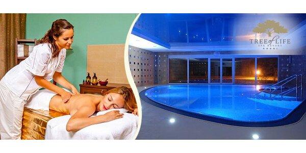 Luxusní spa resort Tree of Life**** pro dva