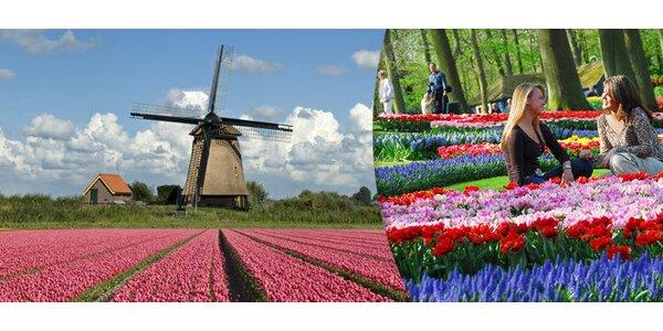 Zájezd do Holandska. Ráj květin Keukenhof i Amsterdam!