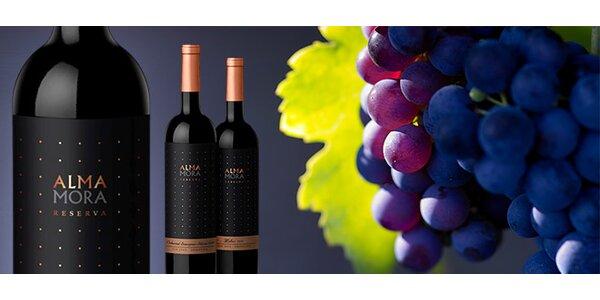 Argentinská vína z oblasti San Juan
