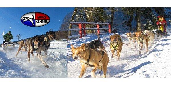 Nezapomenutelná jízda se psím spřežením pro 1 až 6 osob