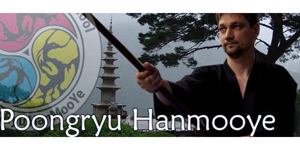 4měsíční kurz korejského bojového umění Hapkido Hanmuye