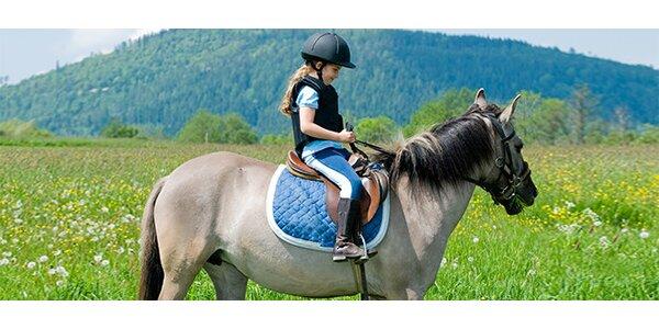 Vyjížďka na poníkovi do Stromovky pro děti