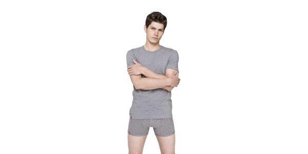 Pánské šedé tričko s kulatým výstřihem Levi's