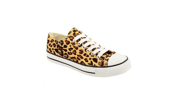 Dámské leopardí tenisky Bless